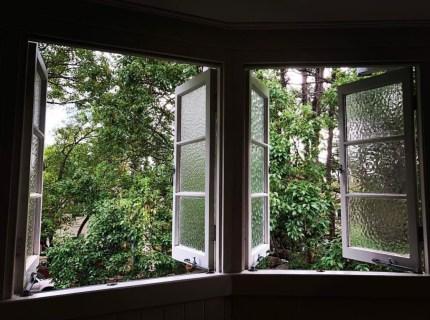 window view 1 Abbott