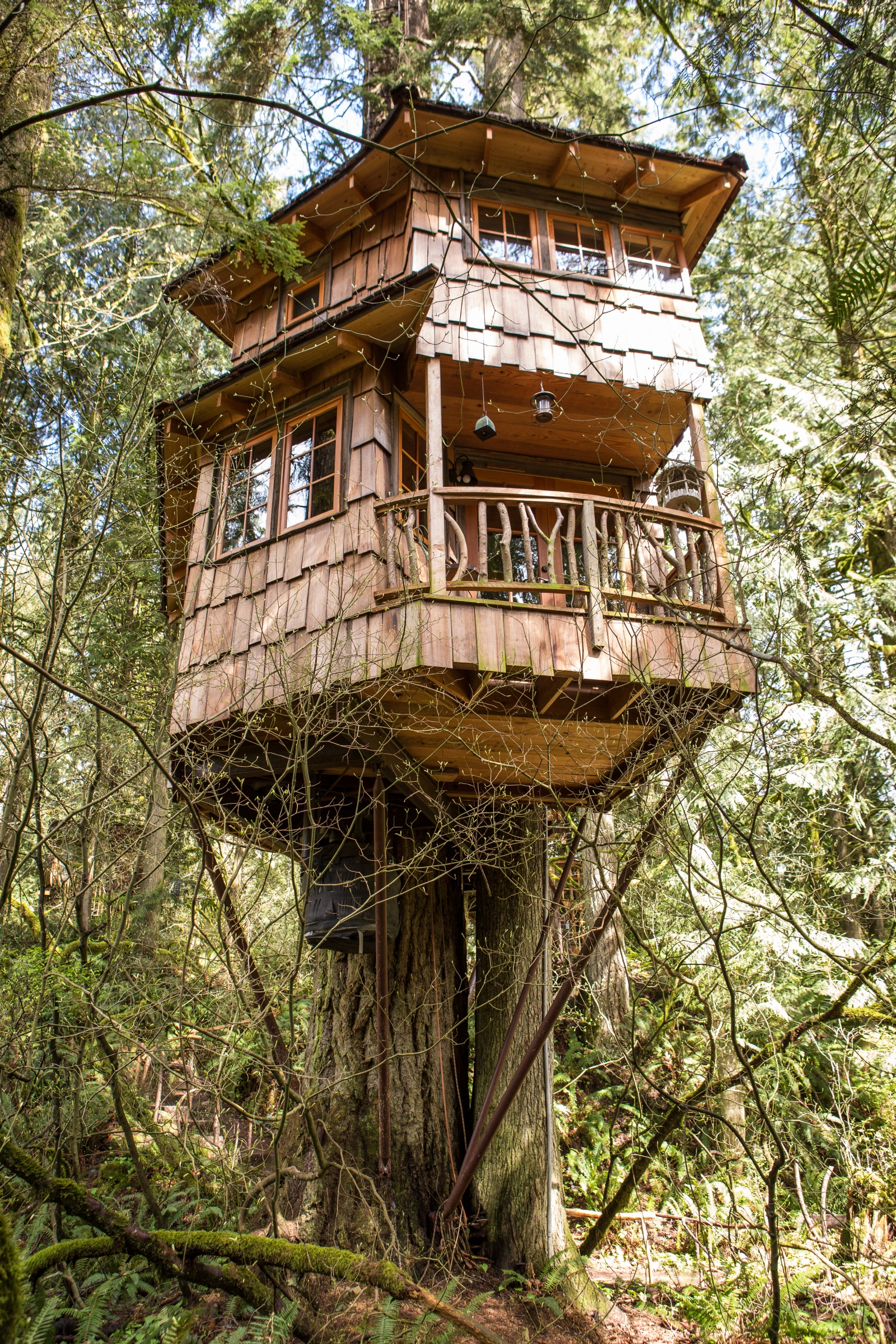 4 20 Treehouse Point - Retreat Along The Raging River For