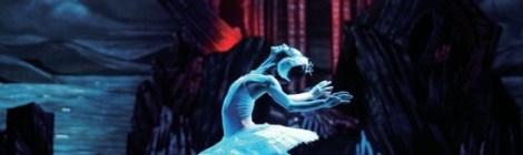 美しさそのもの、ユニバーサル・バレエ「白鳥の湖」