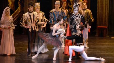 バレエを愛するようになる「白鳥の湖」