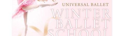 2015年ウィンタースクールのお知らせ