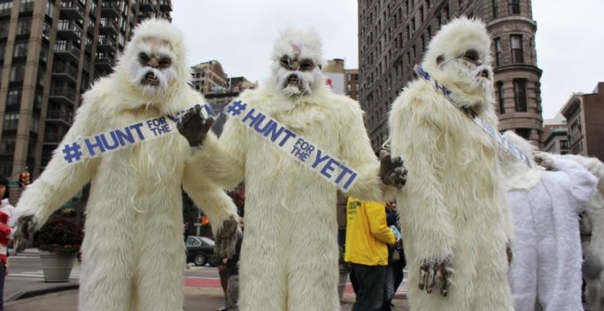 hunt for the yeti