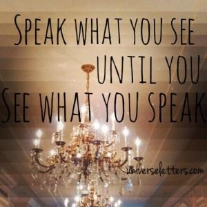 speak it see it2