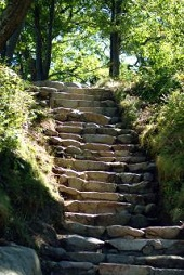 Natures Stairway