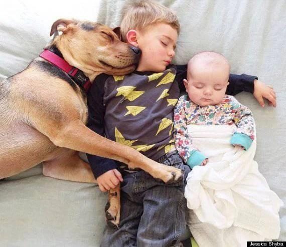 fratellini e cane dormono
