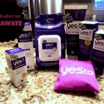 Yes to Blueberries Giveaway!