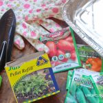 how to start a garden with $10