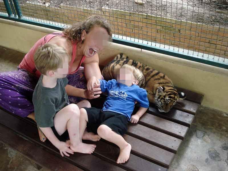 pires attractions touristiques avec des animaux