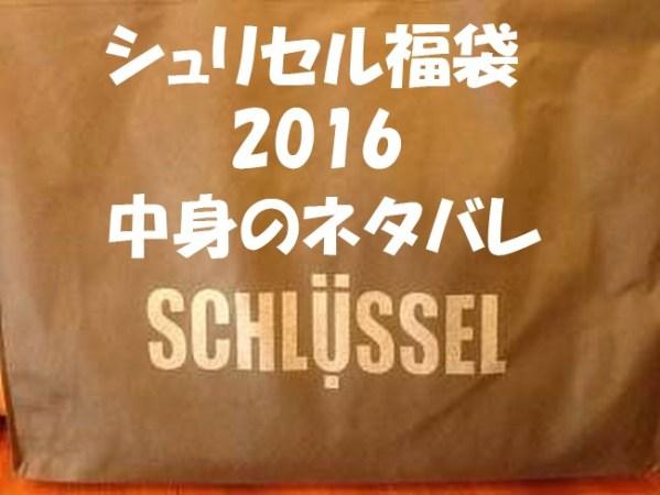 シュリセル福袋2016開封 中身のネタバレは?値段はいくら?ネット通販はできるの?