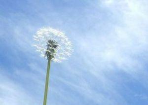 春一番条件定義気象庁