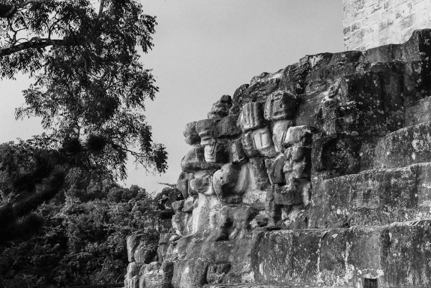 Maya Inschrift, Tikal, Guatemala (c) Veronika C. Dräxler