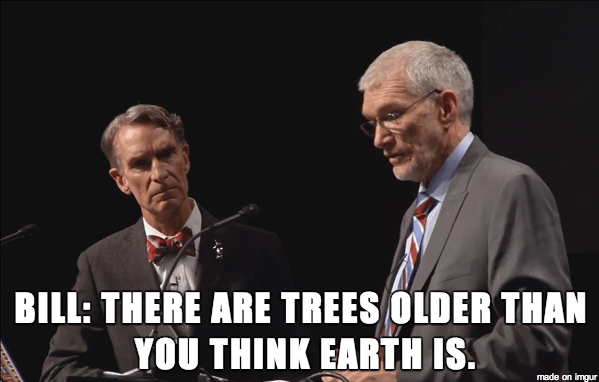 Did Bill Nye Win? Did Ken Ham destroy science or Christianity?
