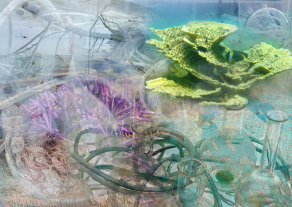 La fiac investit le jardin des plantes untitled magazine for Fiac 2015 jardin des plantes