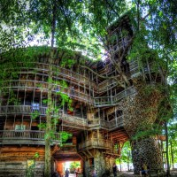 The Minister's Tree House – The Largest Tree House in the World