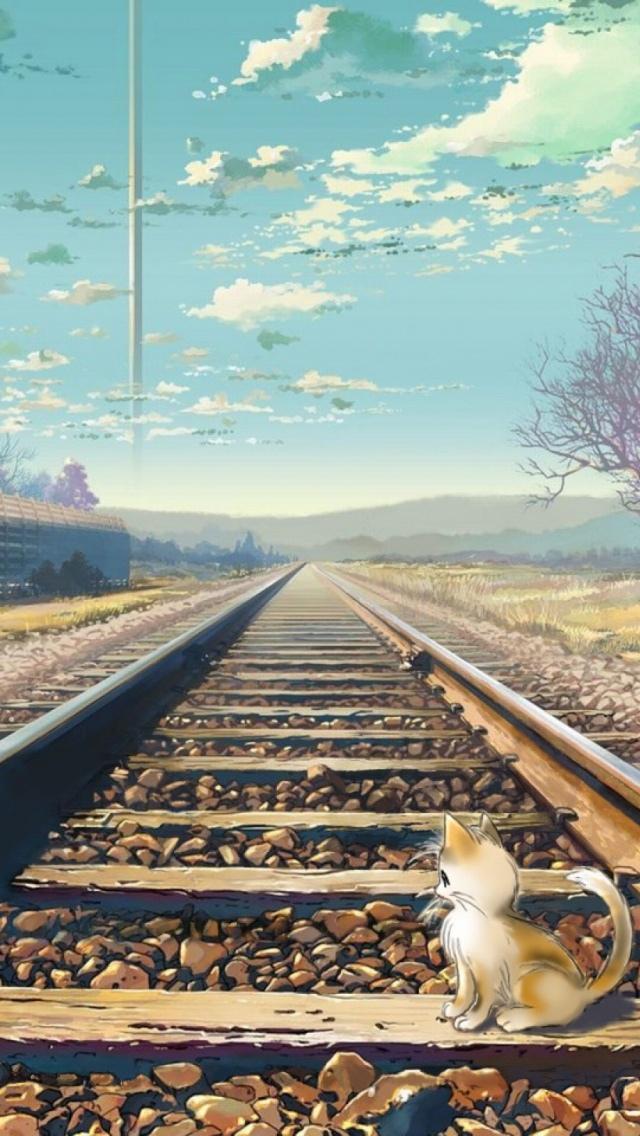 Beautiful Wallpaper Hd With Quotes 火车轨道上的小猫 锁屏图片 高清手机壁纸 动物 回车桌面