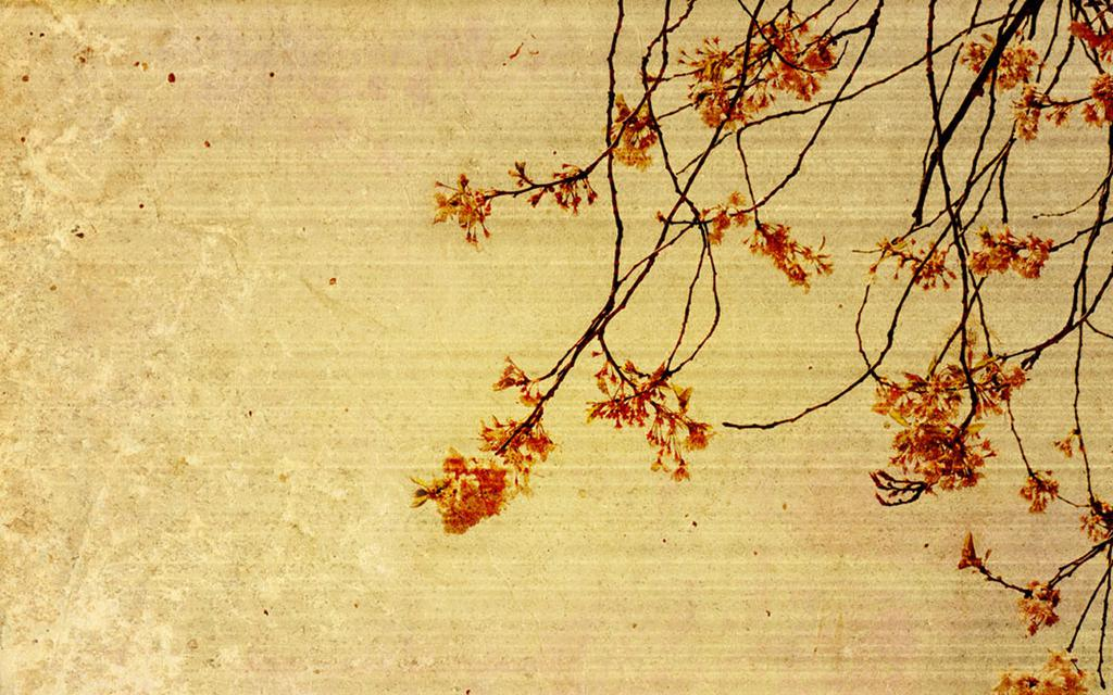 1280x1024 Fall Wallpaper 复古怀旧背景图片 高清壁纸 图片 时光记忆 回车桌面