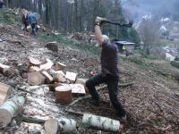 Holz Spalten von Hand?  Motorsgen-Portal