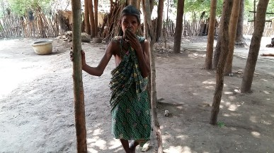 Mother of Pandi 1