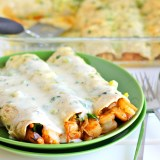shrimp-enchiladas