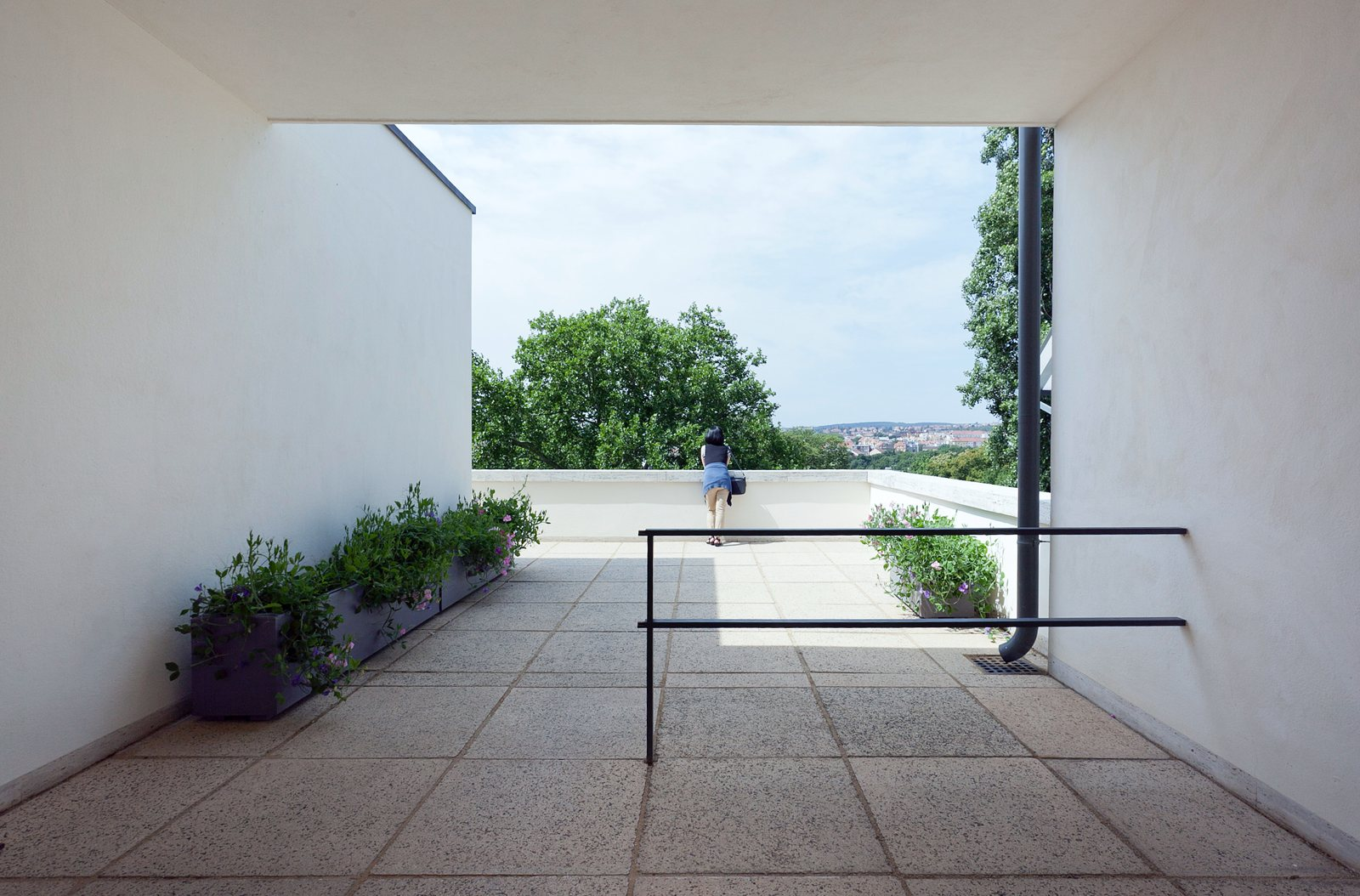 Villa Tugendhat Modern Roof Terrace Villa Tugendhat By Ludwig Mies Van Der Rohe
