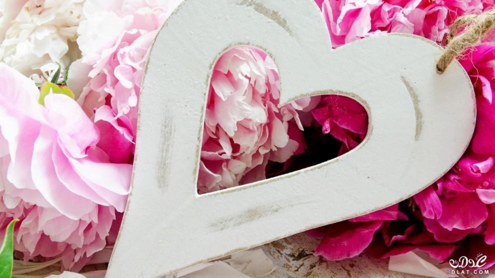 خلفيات رومانسية 2016 اجمل صور حب جديدة Love images 2016