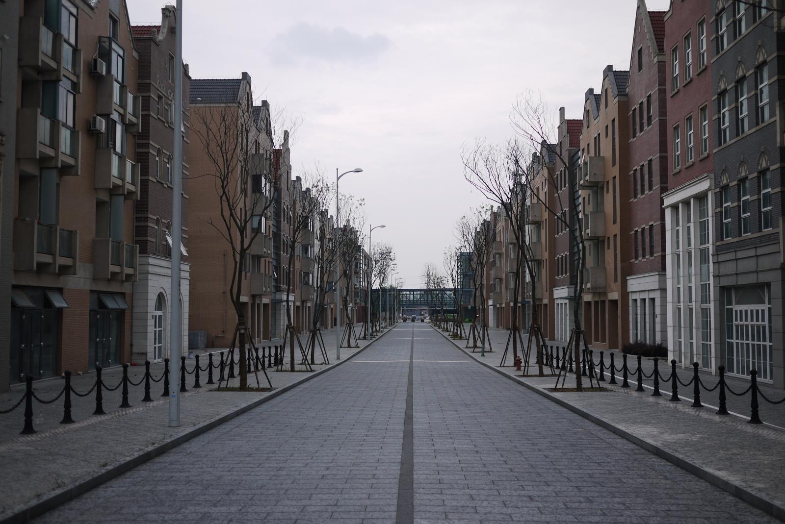 Black Daisy Wallpaper File Street In Holland Village Jpg Wikimedia Commons