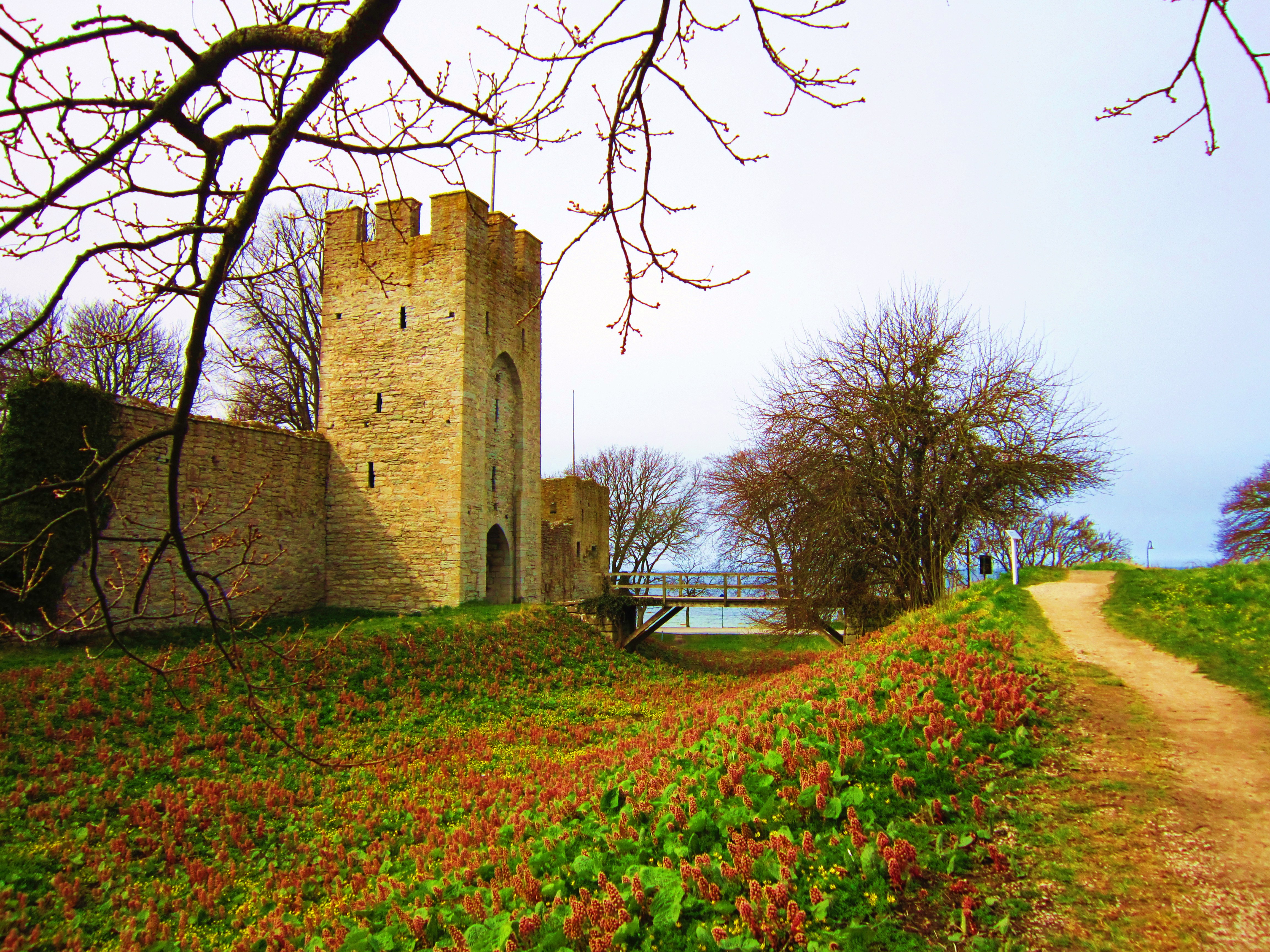 National Geographic Wallpaper Fall File Visby Gotland Sweden Jpg Wikimedia Commons