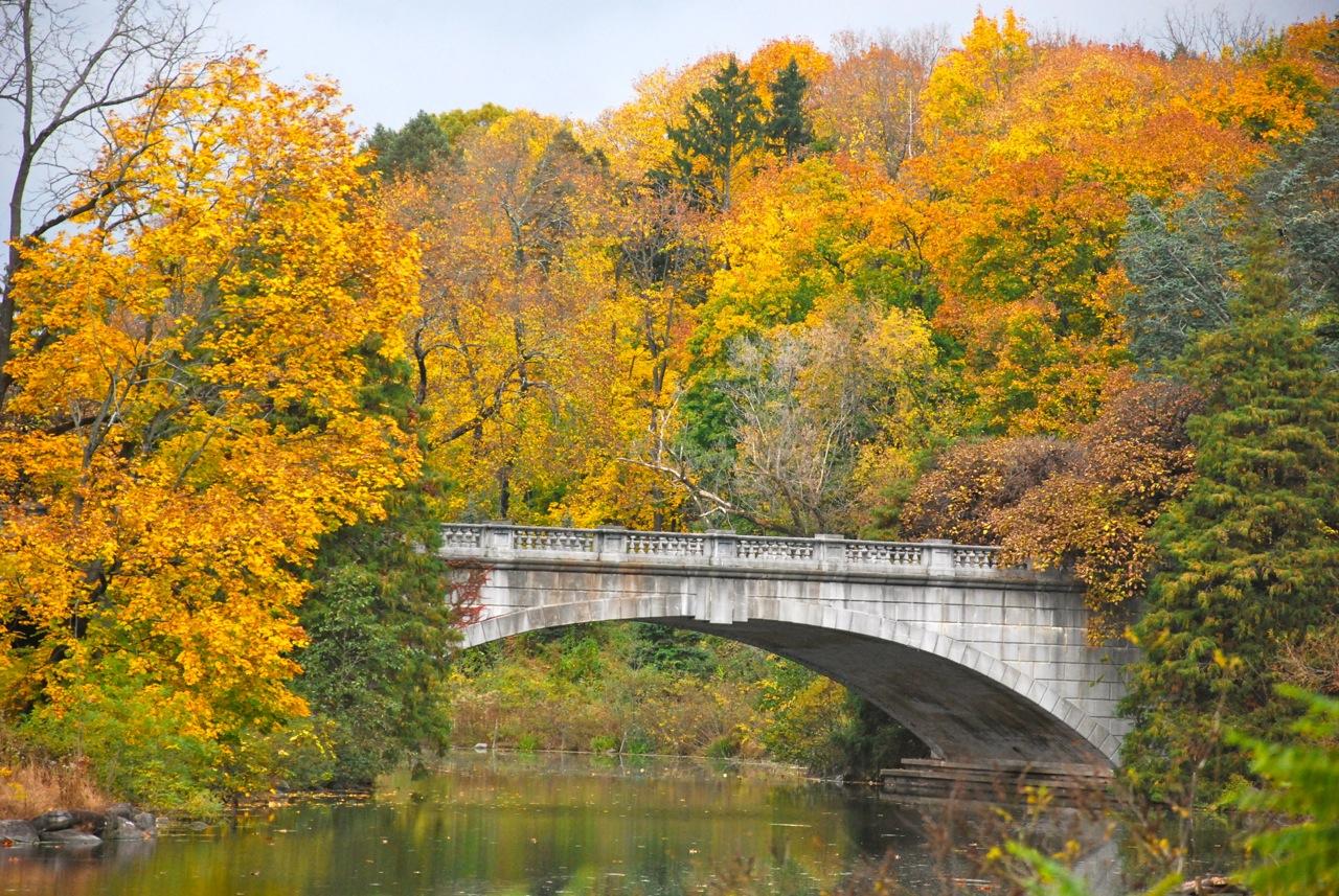Vermont Fall Foliage Wallpaper File Autumn Foliage In Duke Farms Hillsborough New