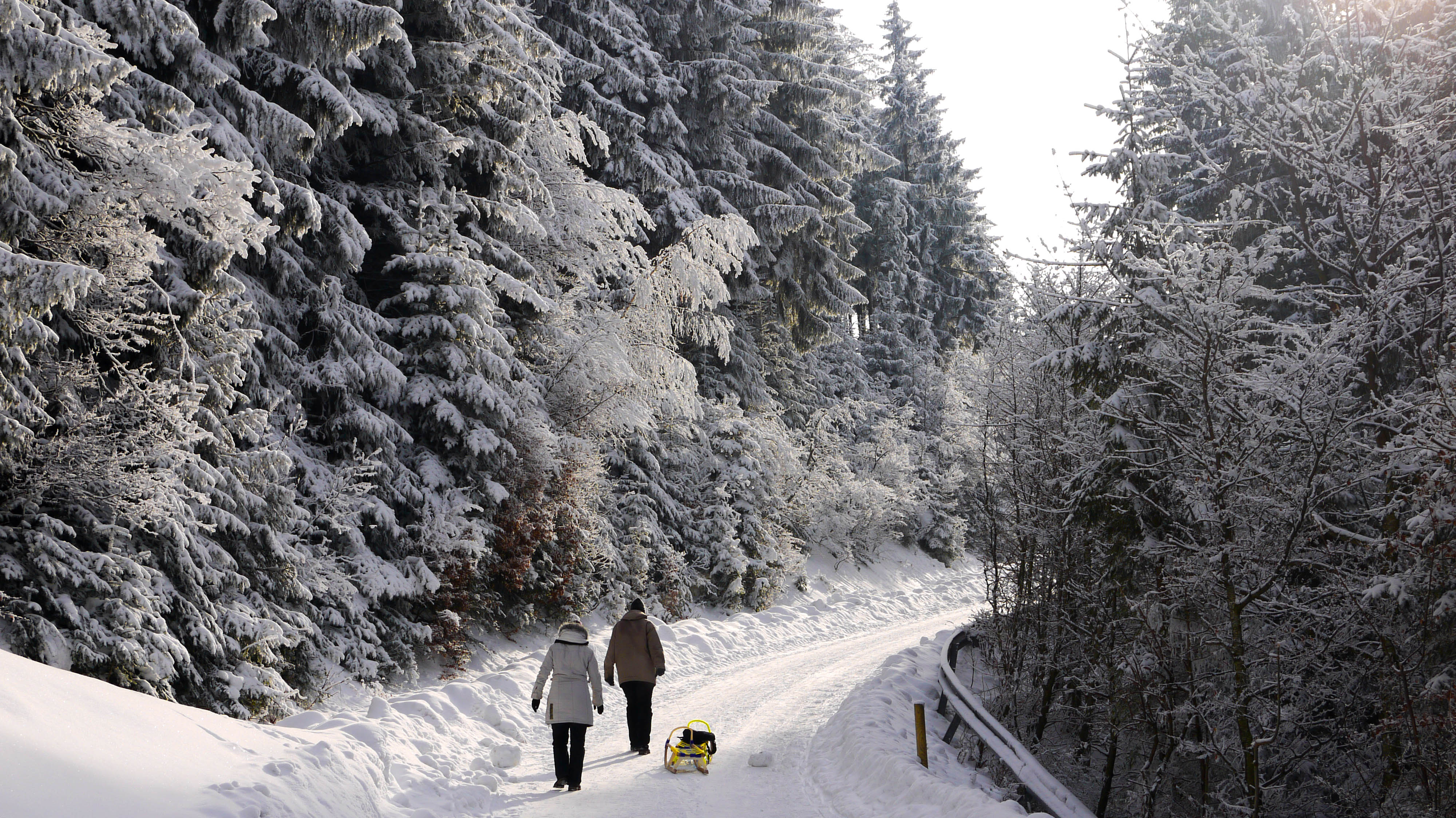 Hd Gif Wallpaper For Desktop File Winter Forest At Blomberg Germany Jpg Wikimedia
