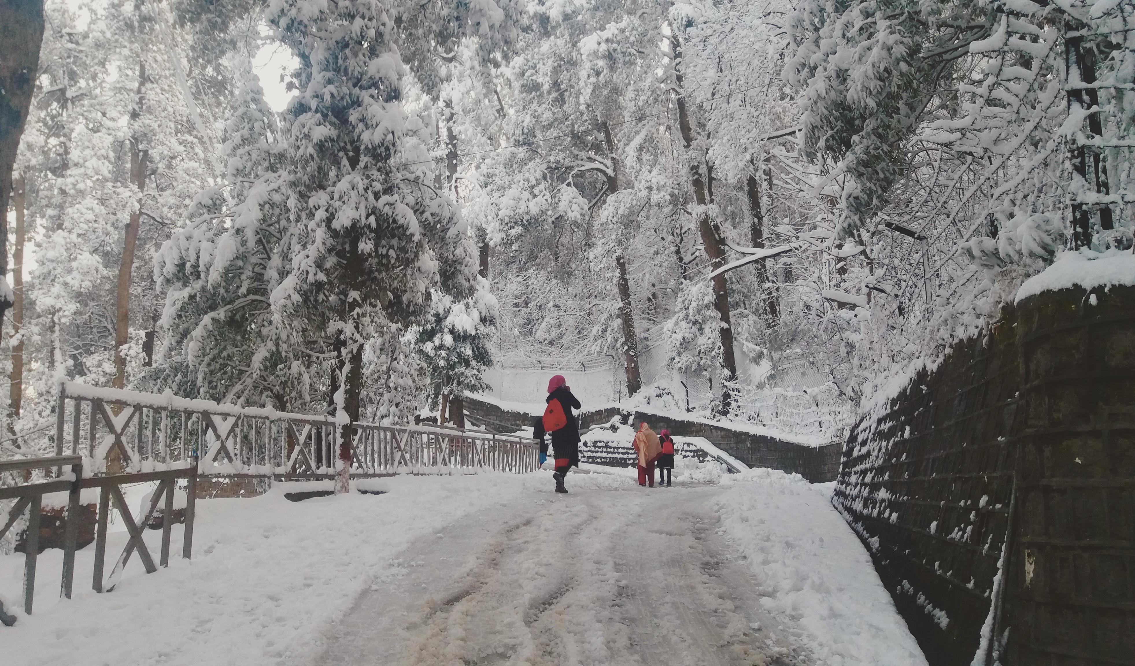 Free Snow Falling Wallpaper File Murree Pakistan Jpg Wikimedia Commons