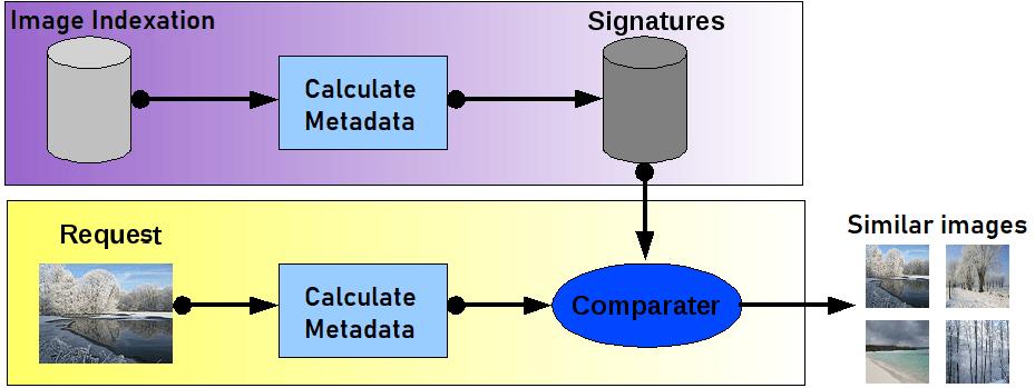 what er diagram