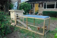 Chik tim: This is Chicken coop backyard designs