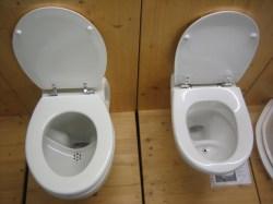 Small Of Power Flush Toilet