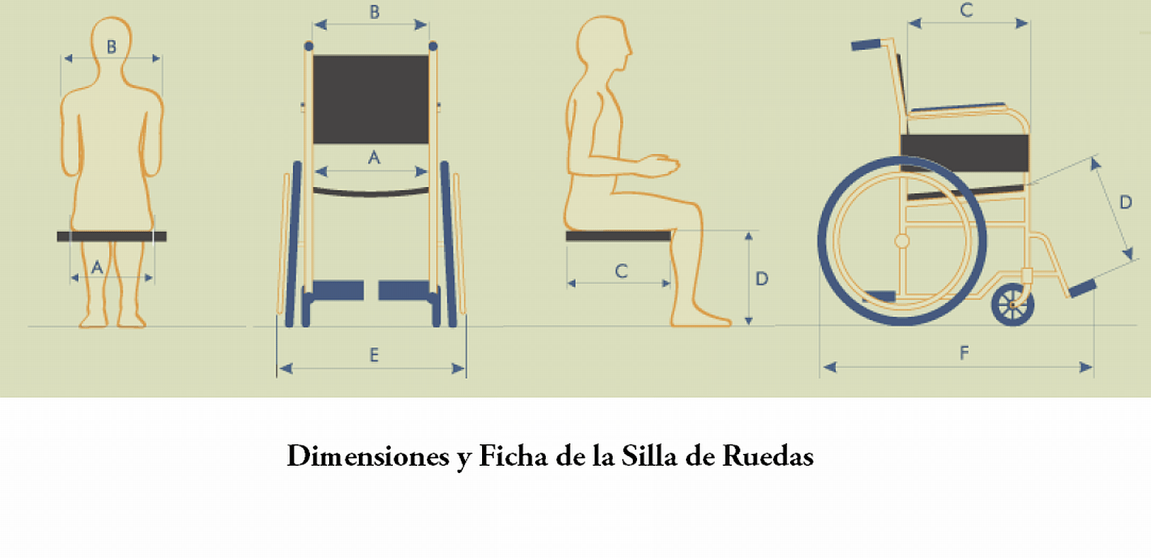 Tamaño Silla De Ruedas Archivo Dimensiones Png Wikipedia Republished Wiki 2