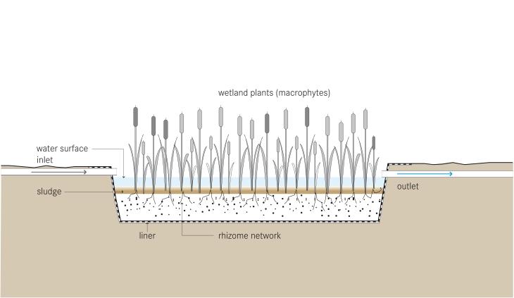 FileSchematic of the Free Water Surface Constructed Wetlandjpg