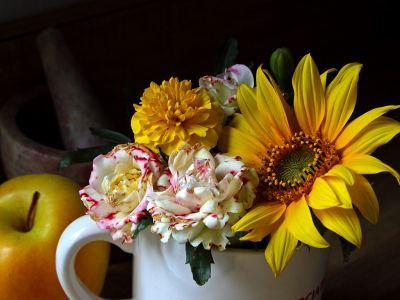 File:Flowers 3 bg 052804.jpg - Wikimedia Commons