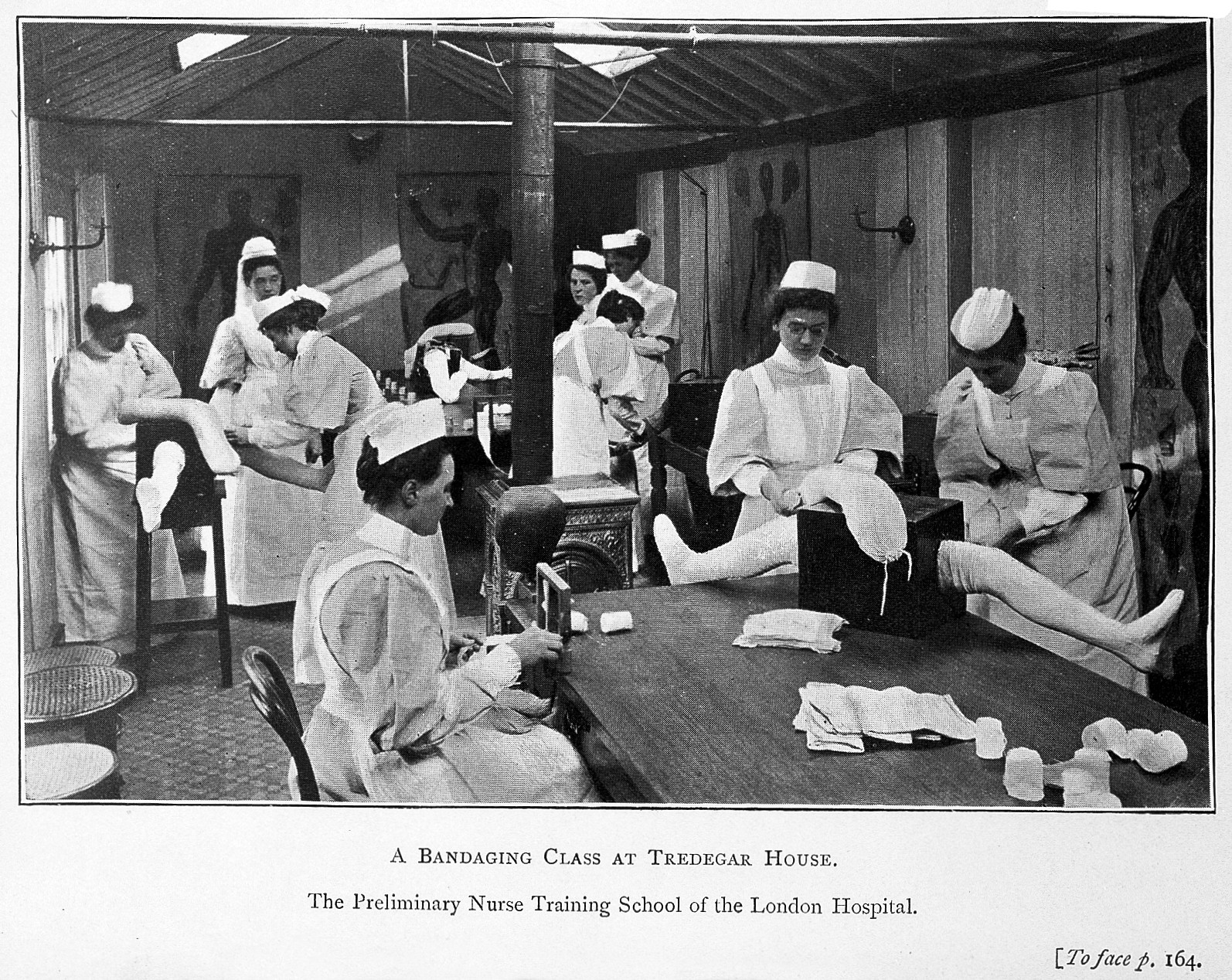 Women In Nursing Wikipedia