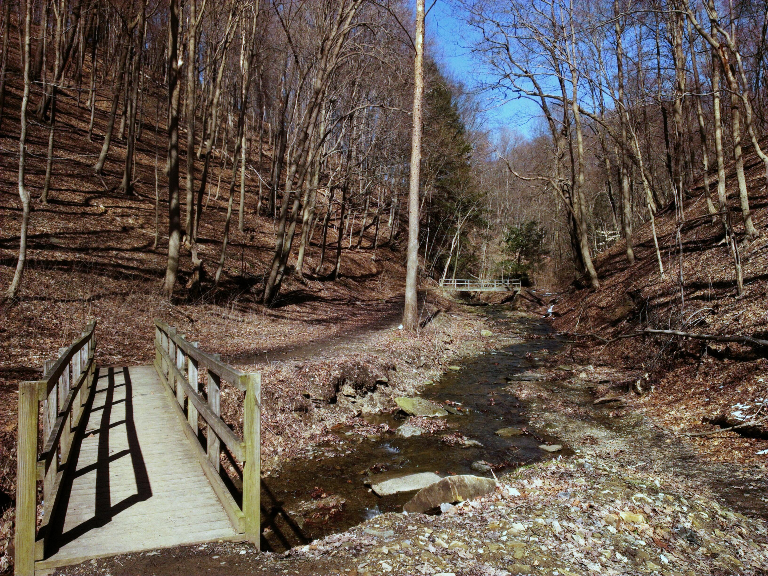 Free Wallpaper Fall Scenes File Fall Run Park In Shaler Township Late Winter 10