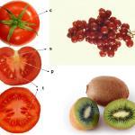 Nutricosméticos: qué son, cuál es su mercado y cómo se regulan