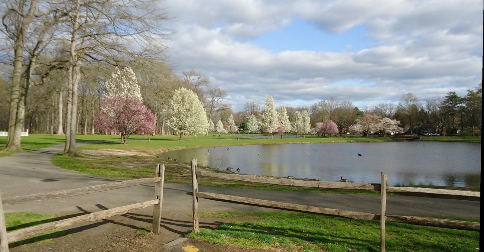 File lake near union county college cranford nj jpg