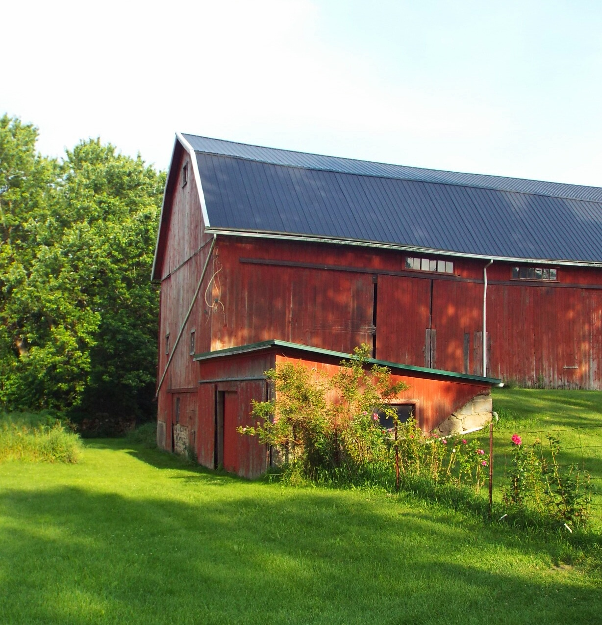 File Black Metal Roof Keeps This Old Barn Healthy 19690306345 Jpg Wikimedia Commons