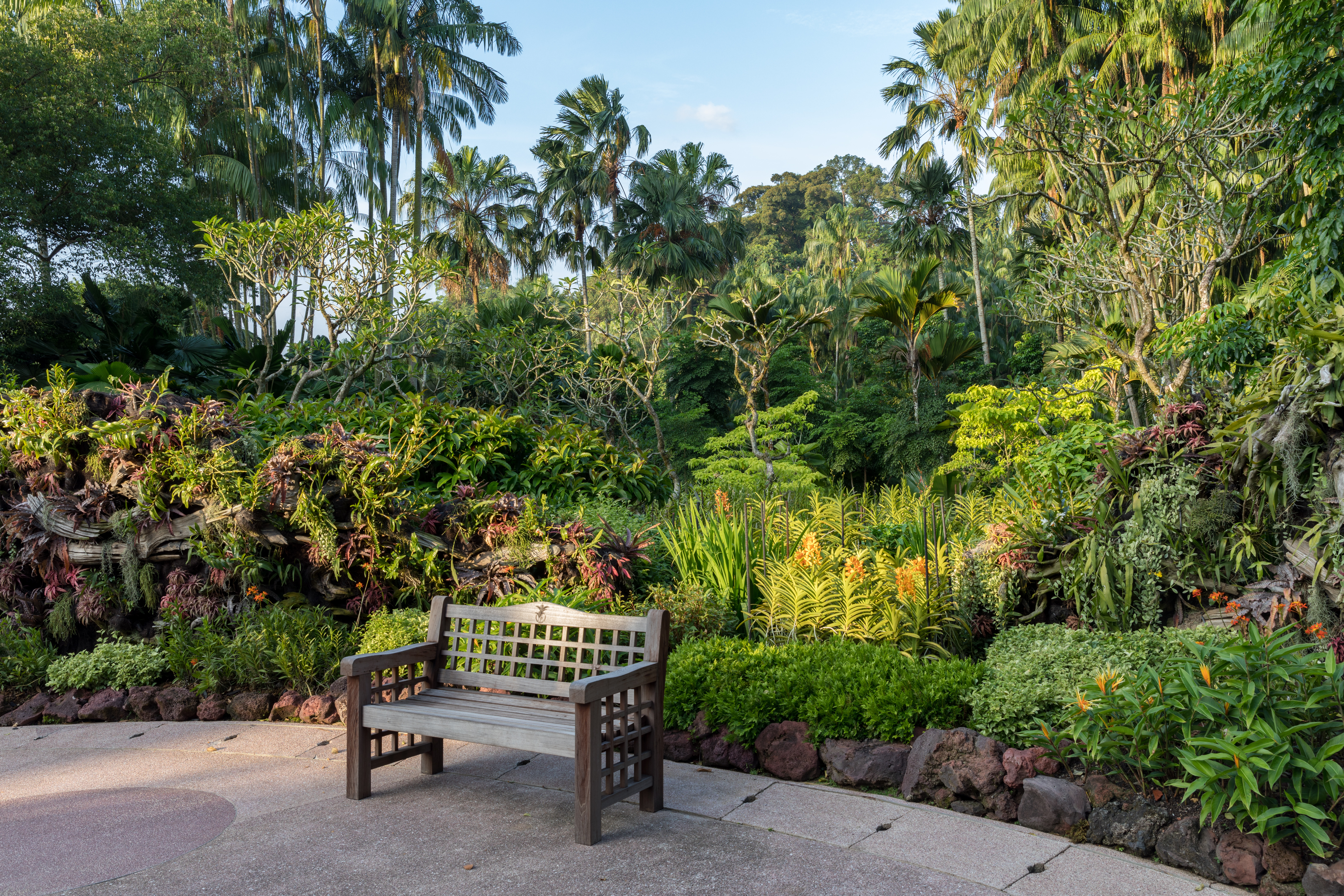Exterieur Botanic File Outdoor Wooden Bench In Singapore Botanic Gardens At Golden