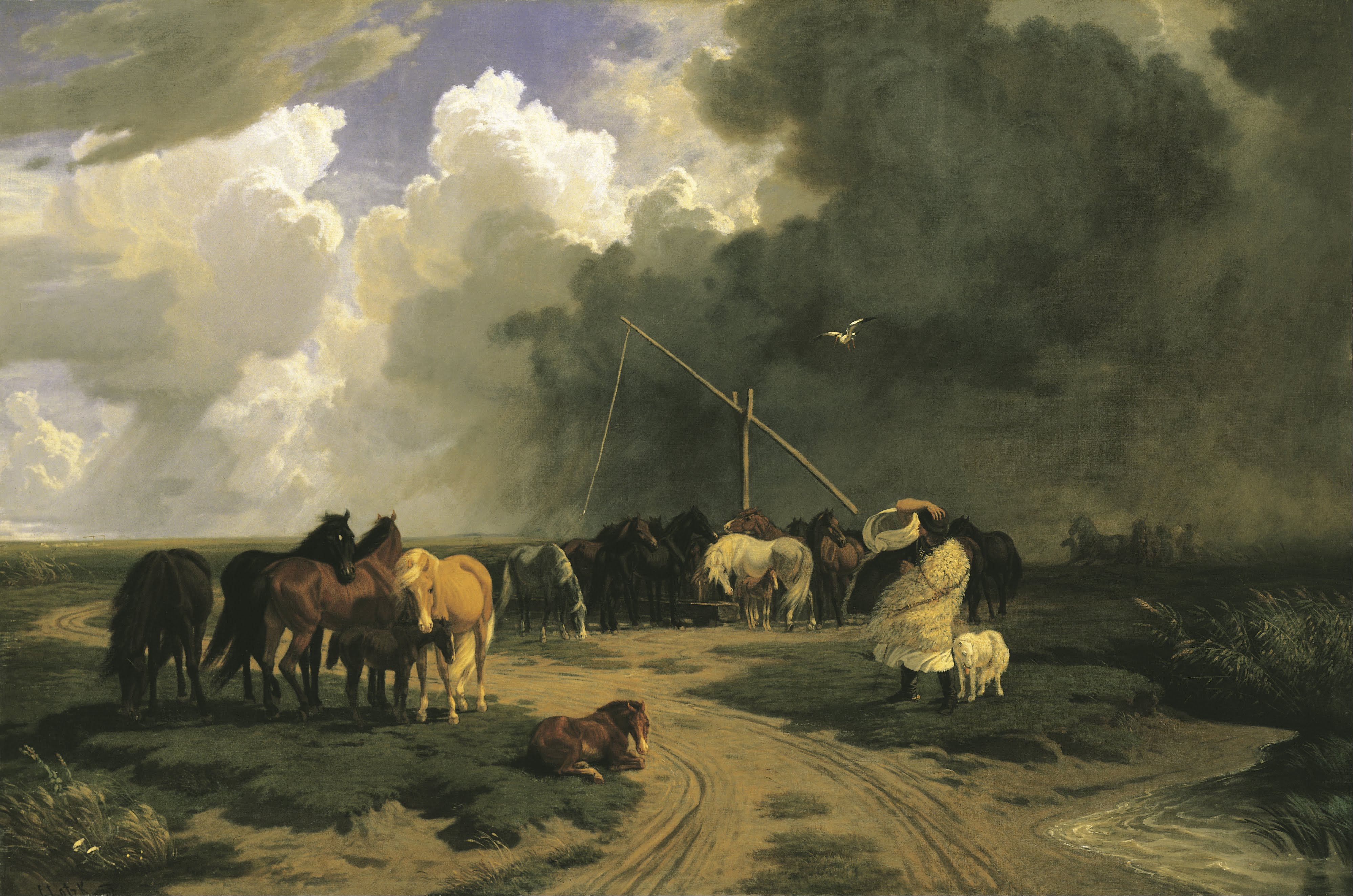 Google Fall Wallpaper File Lotz K 225 Roly Horses In A Rainstorm Google Art
