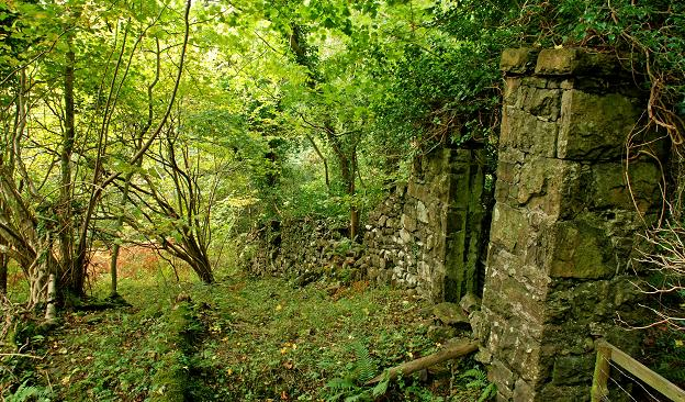 Google Desktop Wallpaper Hd File Old Wall And Gate Glenarm Forest Geograph Org Uk