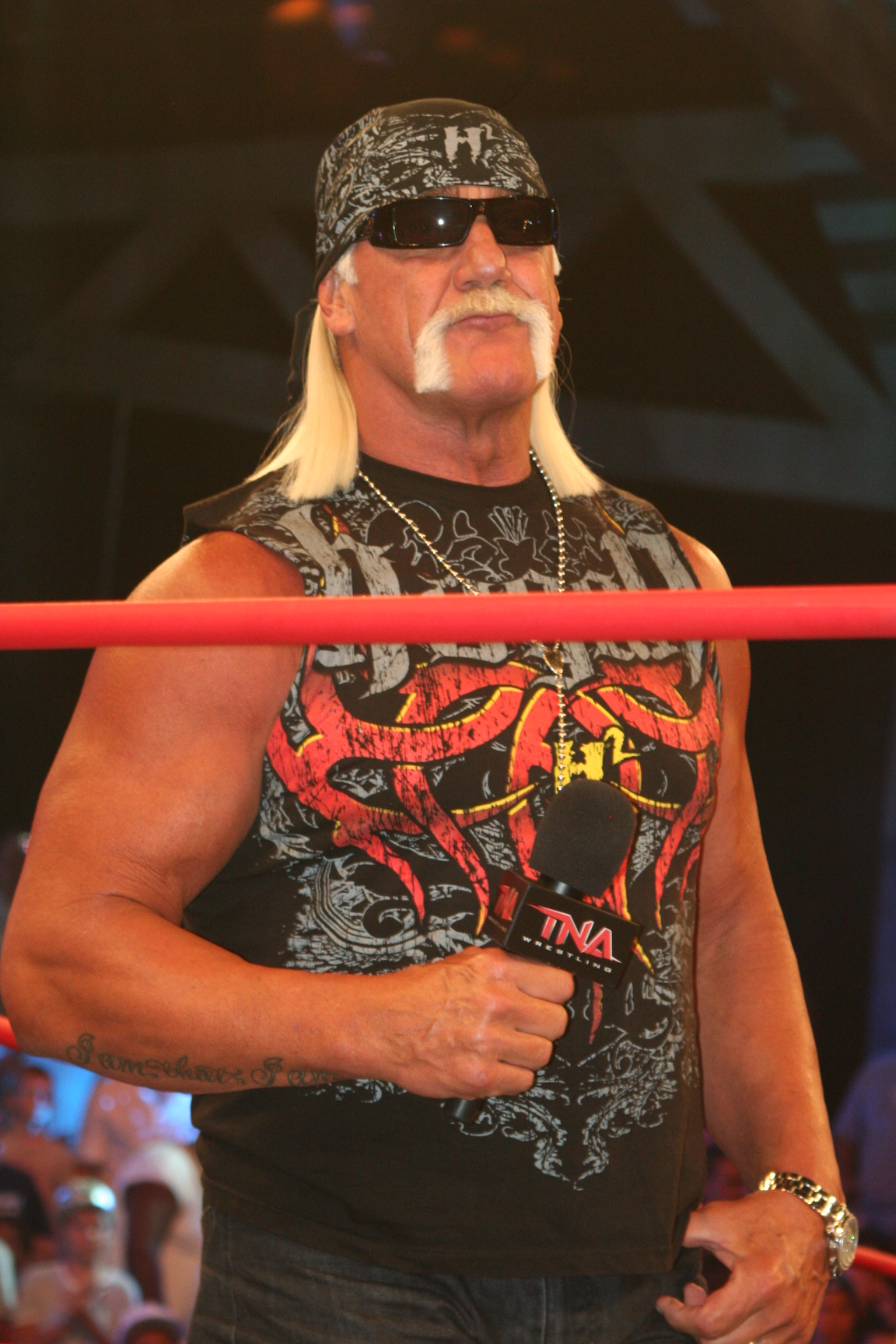 Hogan Hulk Immortal Professional Wrestling Wikipedia