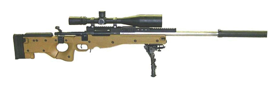 AIAW Mk 13 MOD 5 SWS using an AICS 20 stock and a Remington 700 - firearm bill of sales