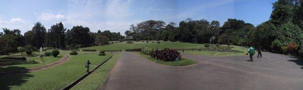 Kawasan Istana Bogor ~ Alvindwiputra.id