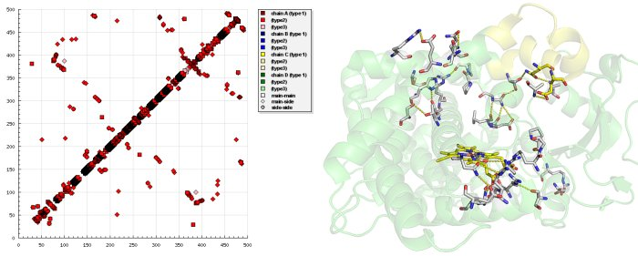 Protein contact map - Wikipedia