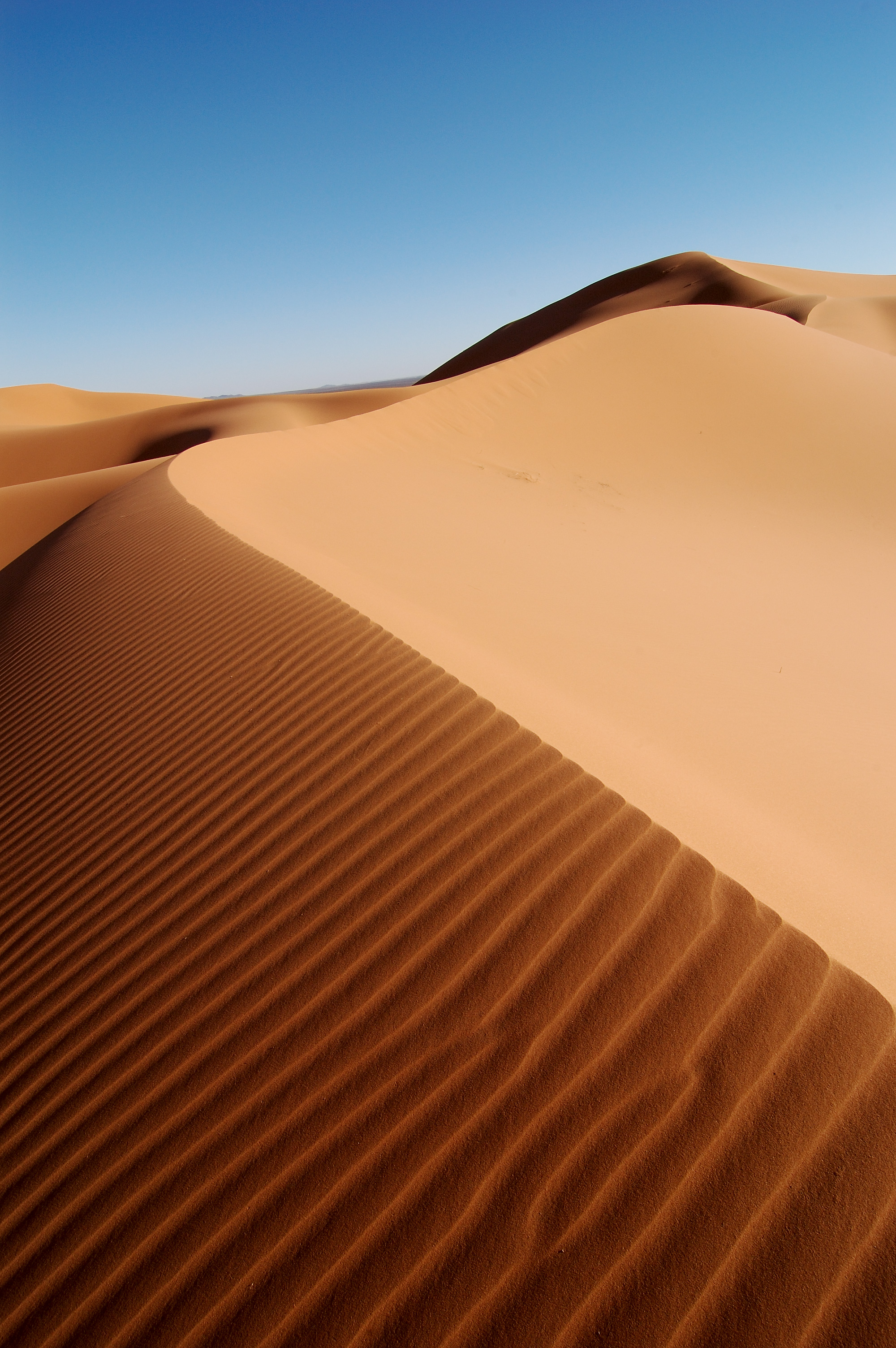Animated Weather Wallpaper Iphone 30 Fantastic Photos Of Athabasca Sand Dunes Places