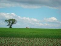 File:Amish Farm Lancaster County, PA 1.jpg - Wikimedia Commons